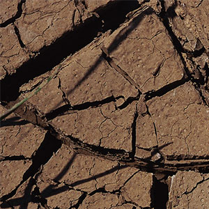 Jílovitá půda s charakteristickou mozaikou na povrchu. zdroj:Fix Clay Soil viz odkaz obrázku