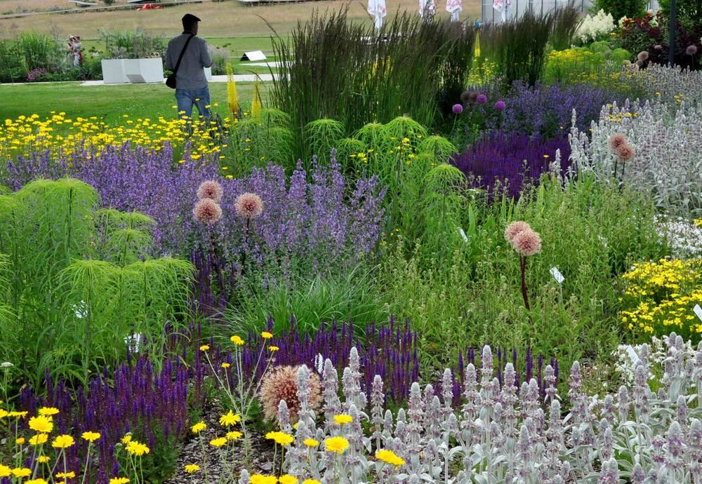 BUGA 2015 - přehlídka toho nejlepšího, co německá zahradní architektura nabízí. Současné trendy jsou přirozené kombinace s možností maximální proměny během celého roku - tvorba živých obrazů. (zdroj foto: Tereza Mácová)