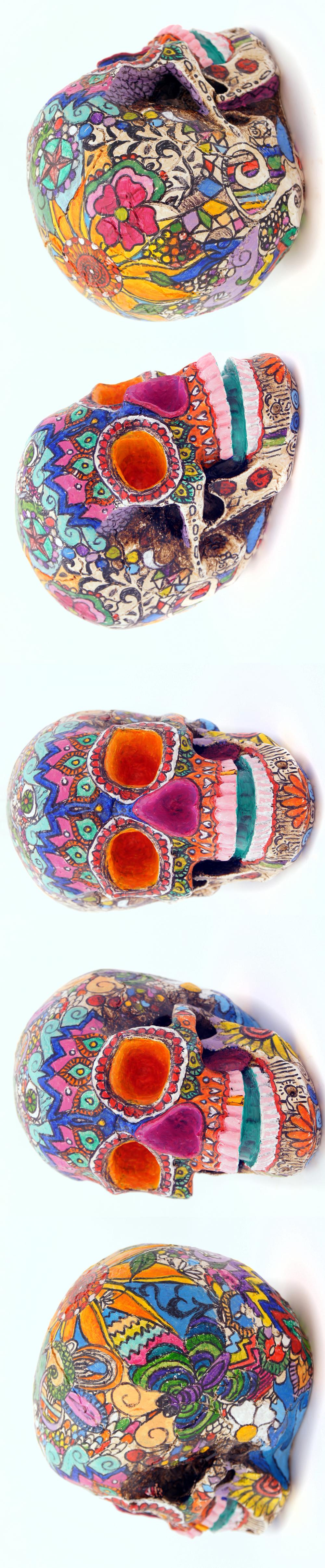 skullsetup.jpg