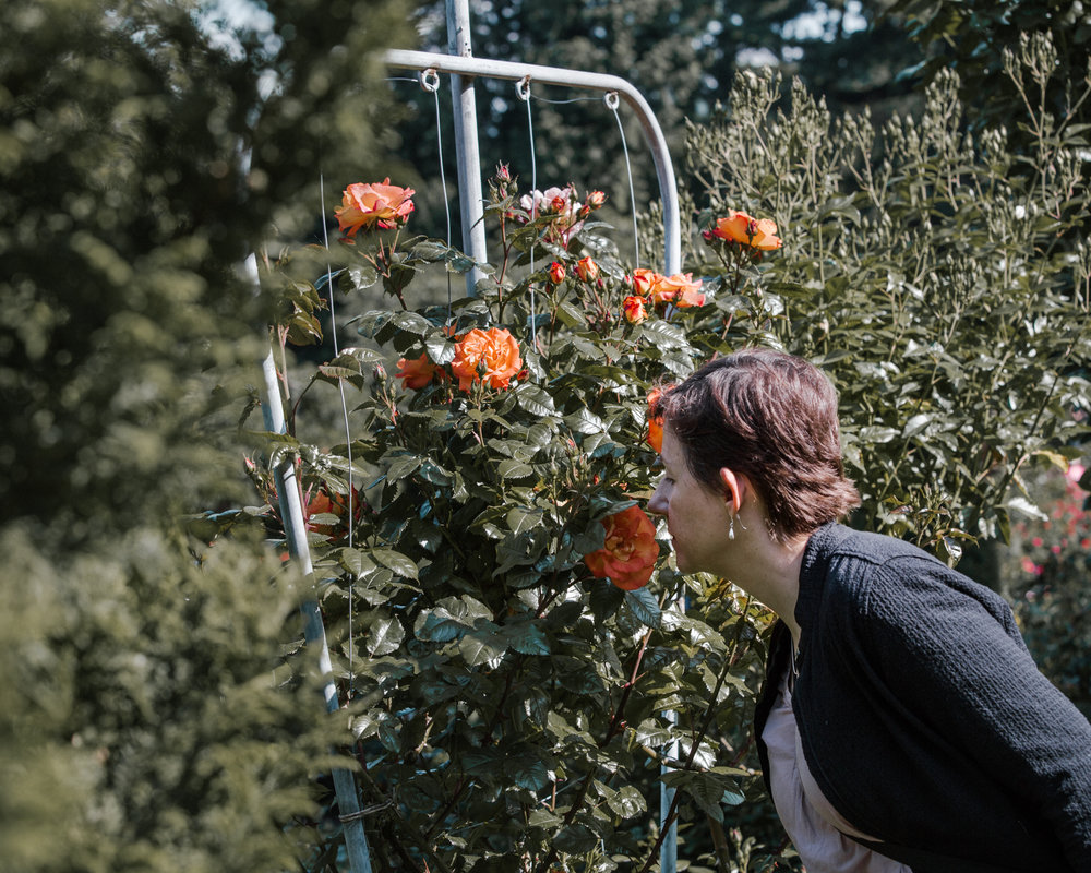 Taking time to smell the roses (International Rose Test Garden in Portland, OR. Image by  Dezign Horizon )