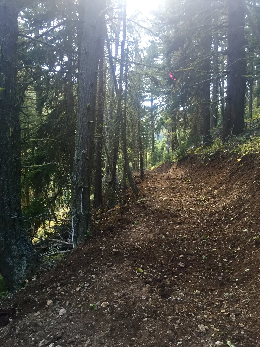 Full Bench trail construction .Logging Creek ,MT