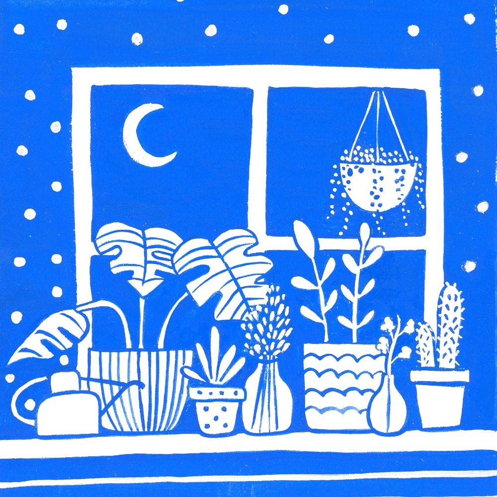 night plants.jpg