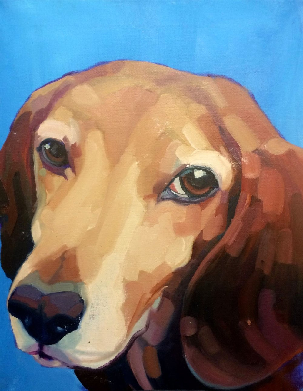Bailey, 2015. Oil on canvas. 18x24