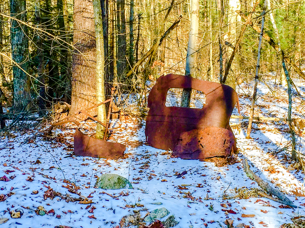 I found a rear end of an old car today in the woods of Quabbin.  I wondered how long this has been standing here against this tree?  1/21/16