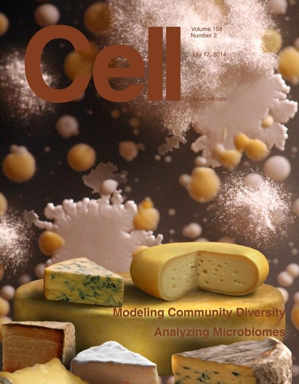 Cell_cover_final.jpg