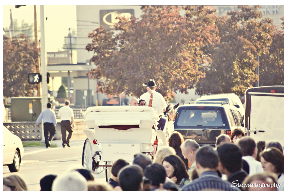 T+J Wedding00204