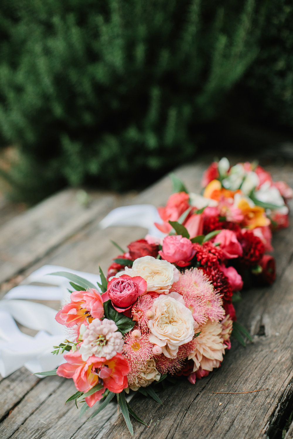Zinnias, roses, flowering gum, tulips and dahlias - a candy inspired early Autumn bouquet. Photography by Bear Deer Fox.