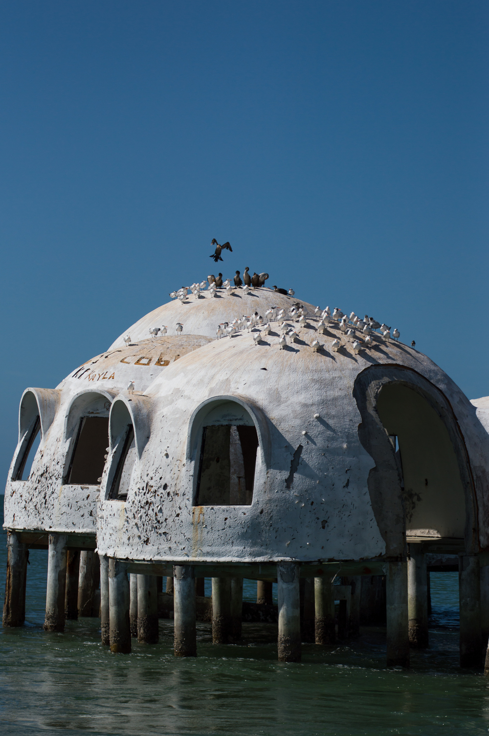 Marco Island - Nov 29 2015-141.jpg