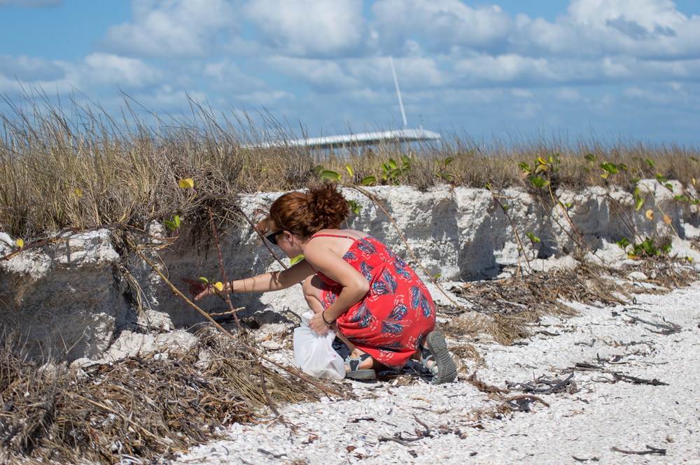 Marco Island - Nov 29 2015-194.jpg
