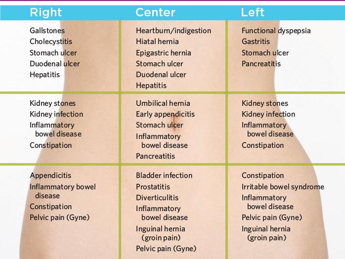 abdominopelvic cavity diagram