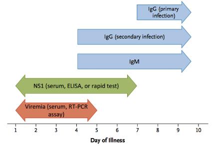 Simmons et al; Dengue; NEJM 2012