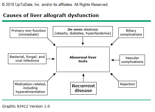 "This figure shows the causes of liver allograft dysfunction published in the UpToDate article entitled, ""Liver Transplantation: Diagnosis of acute cellular rejection."""