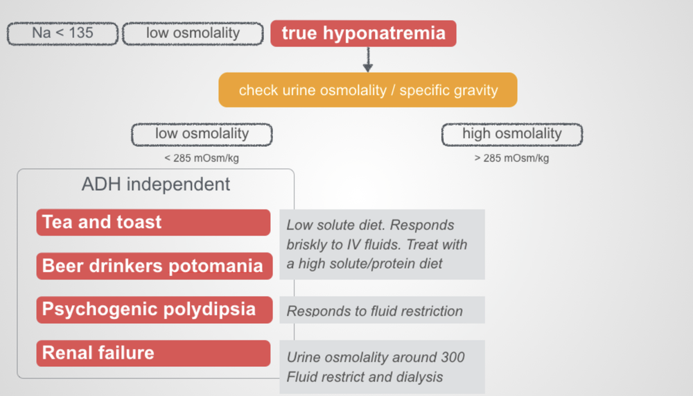 hyponatremia 2.png