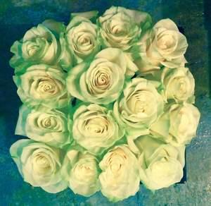 Cream rose square centerpiece arranged in vase