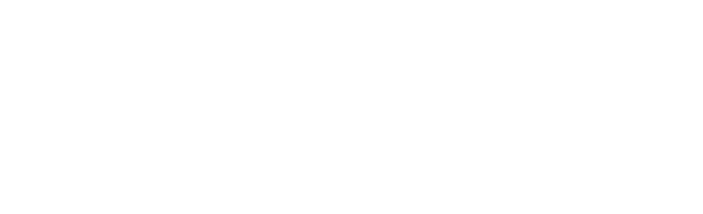 Vowed Box Co. Primary Logo