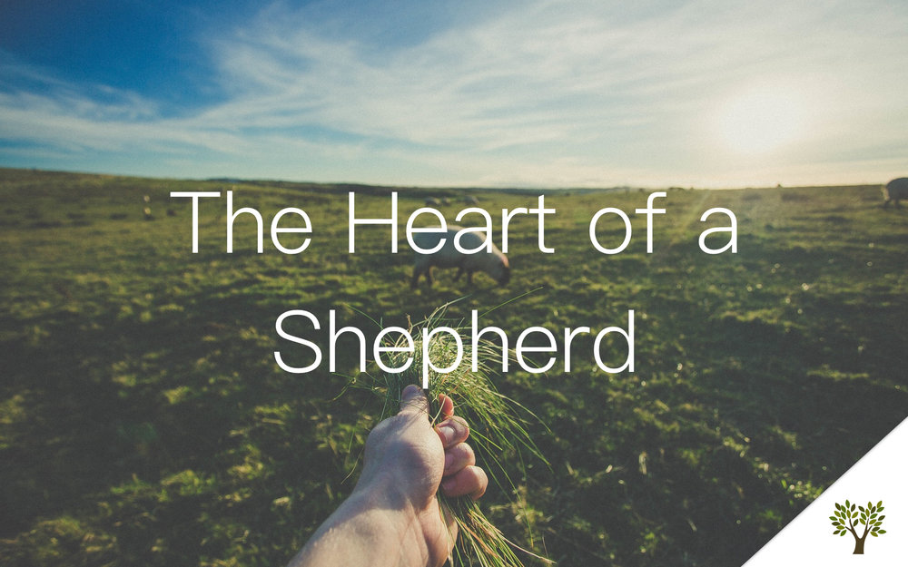 The Heart of a Shepherd  Gerald Young