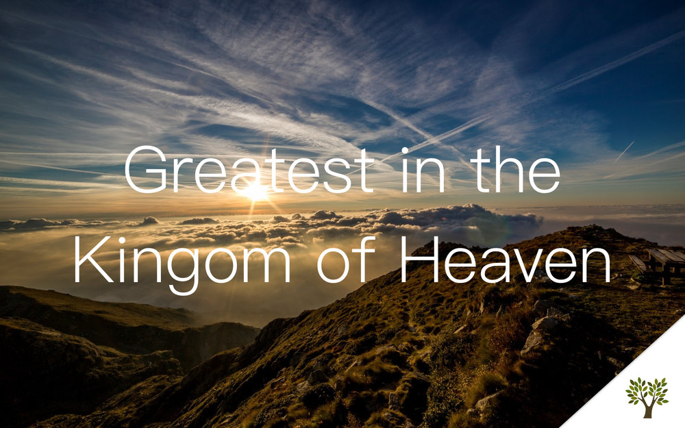 Greatest in the Kingdom of Heaven  Terry Fant