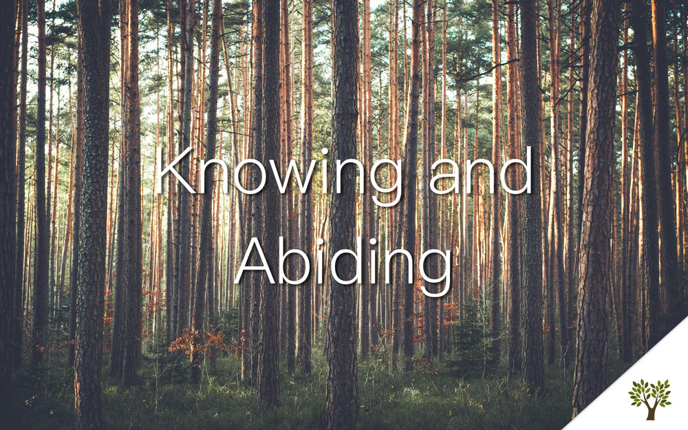 Knowing and Abiding  Gerald Young