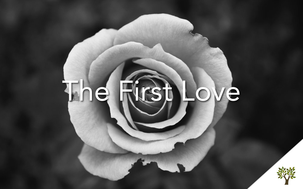 The First Love  Terry Fant