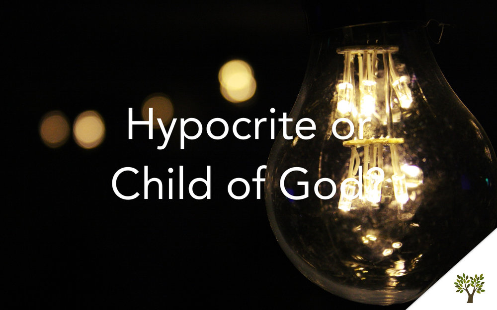 Hypocrite or Child of God?  Terry Fant