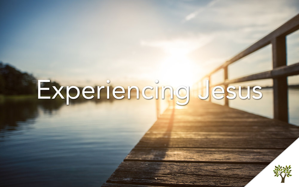 Experiencing Jesus  Terry Fant