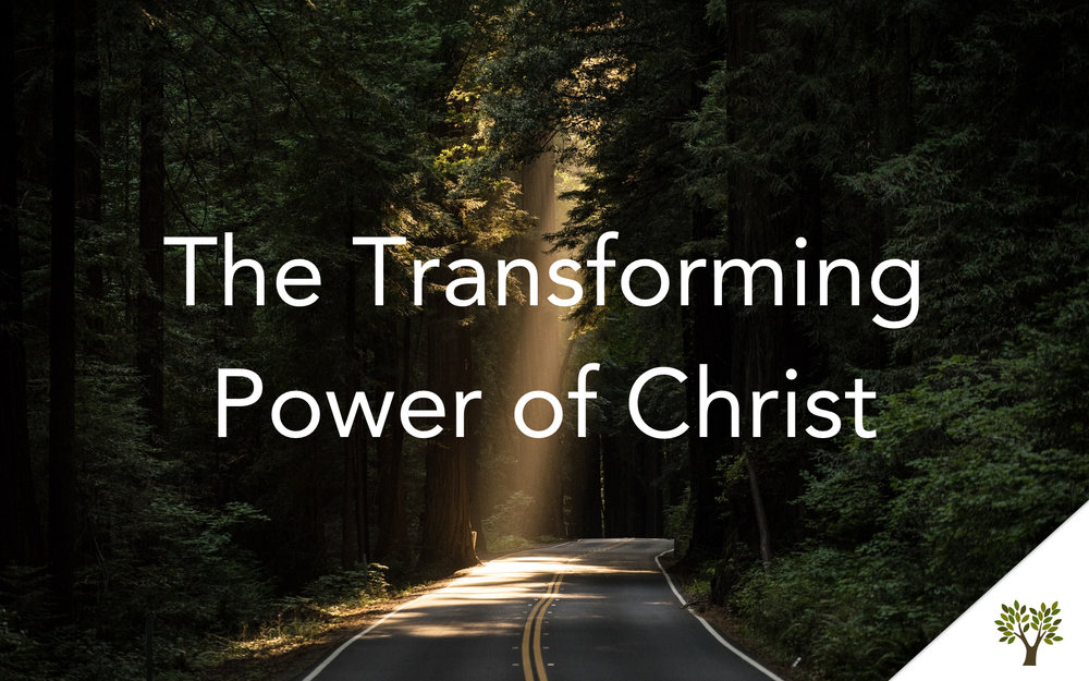 The Transforming Power of Christ  Terry Fant