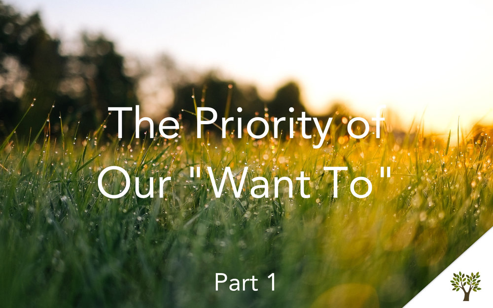 "The Priority of Our ""Want To"" - Part 1  Terry Fant"