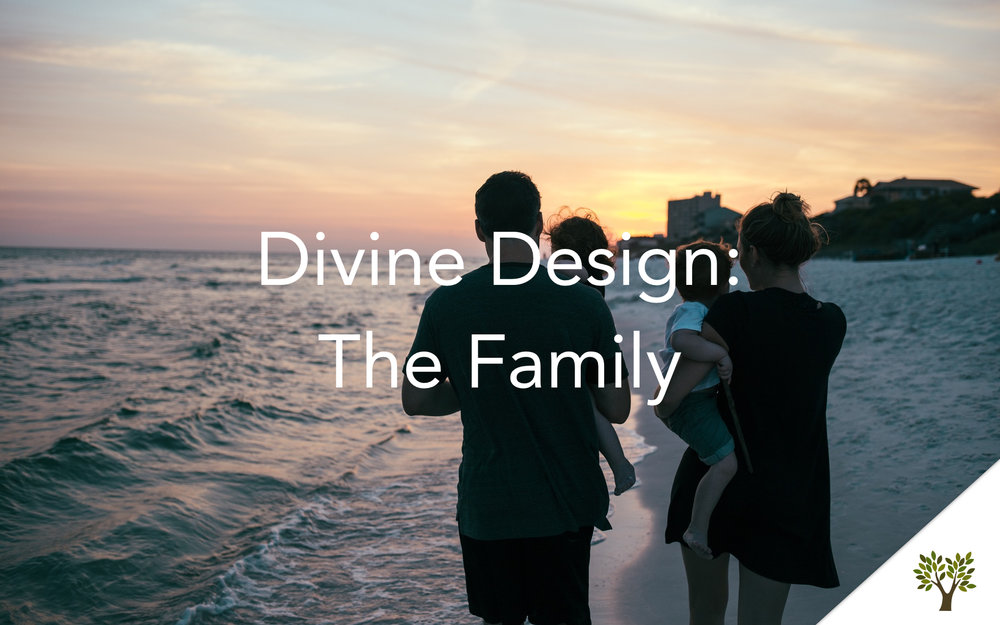 Divine Design: The Family  Terry Fant