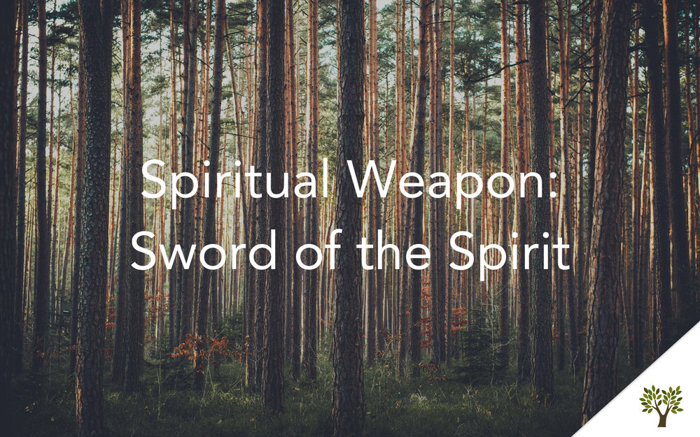 Spiritual Weapon: Sword of the Spirt  Terry Fant