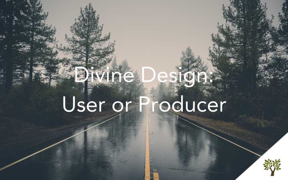 Divine Design: User or Producer  Terry Fant