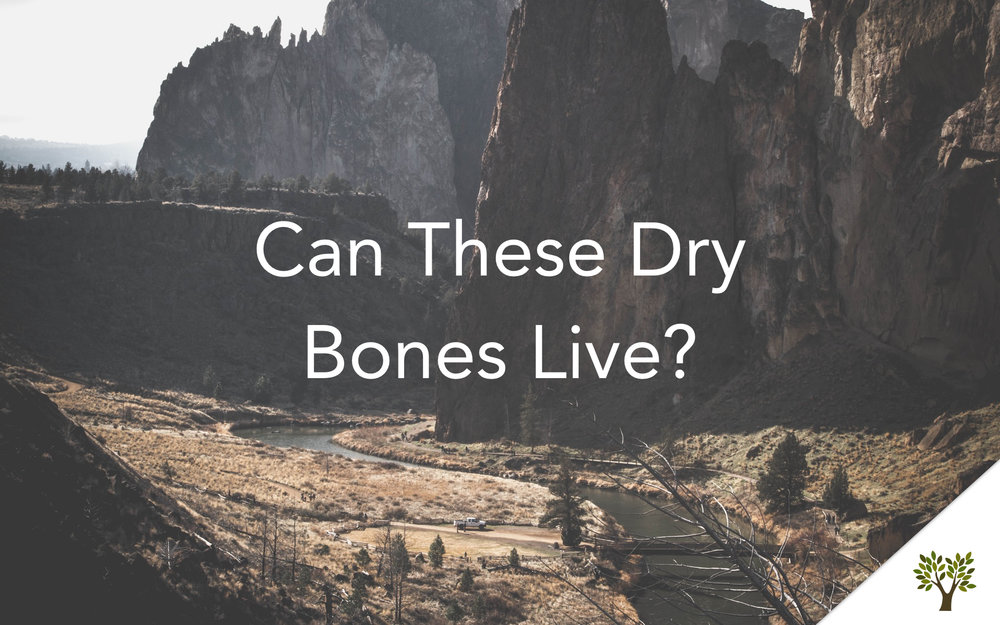 Can These Dry Bones Live?  Terry Fant