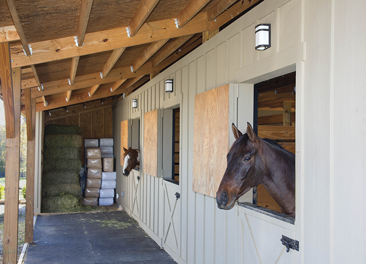 Valera CFL_horse barn.png