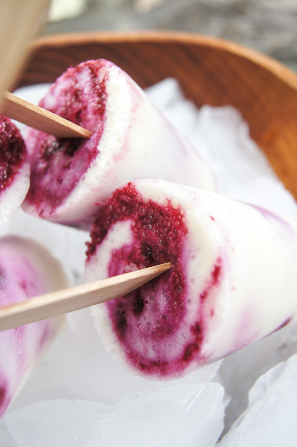 Paletas_Yogurt and blueberries-00354.jpg