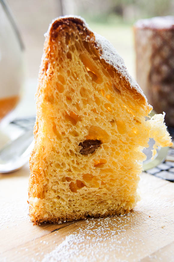 TBB_Golden Orange Panettone-5.jpg