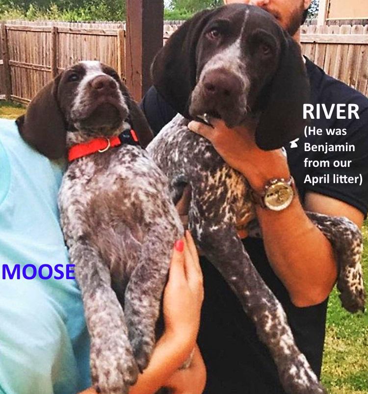 Moose+River.jpg