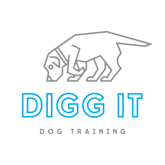 Digg It Dog Training