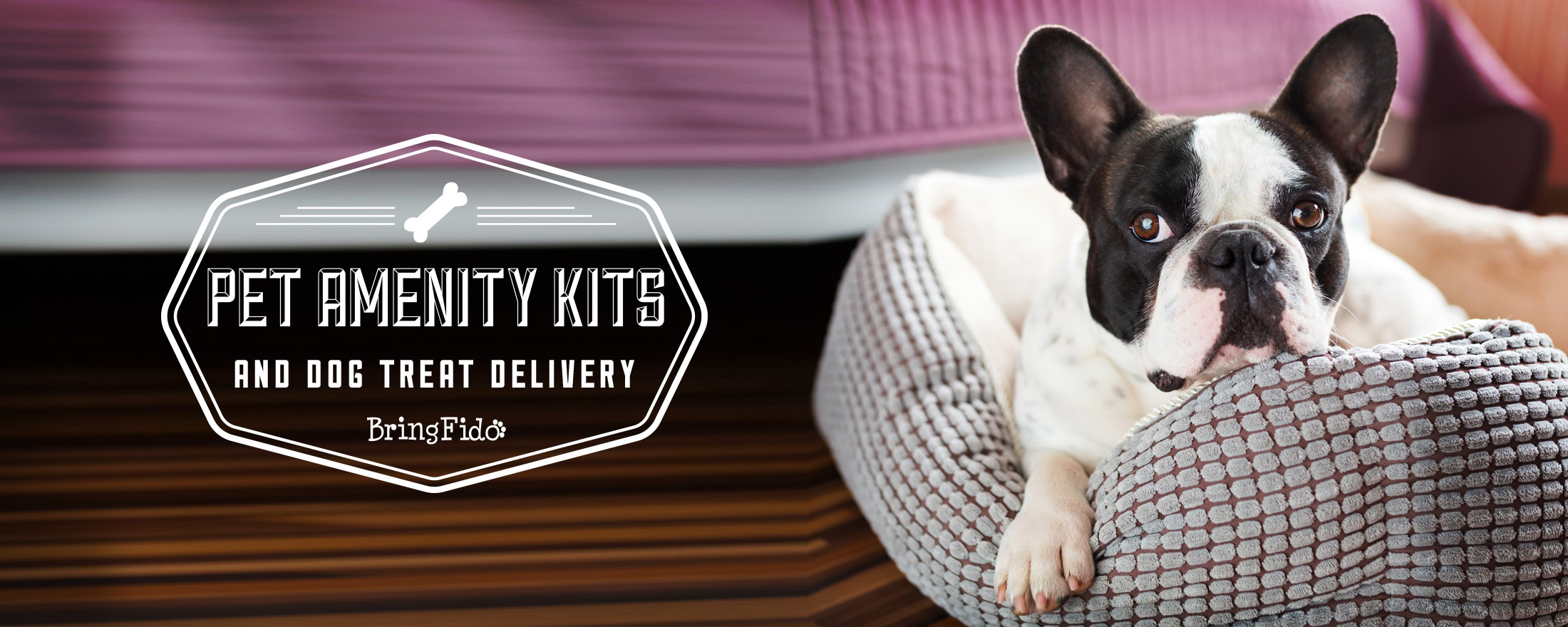 PET AMENITY KITS