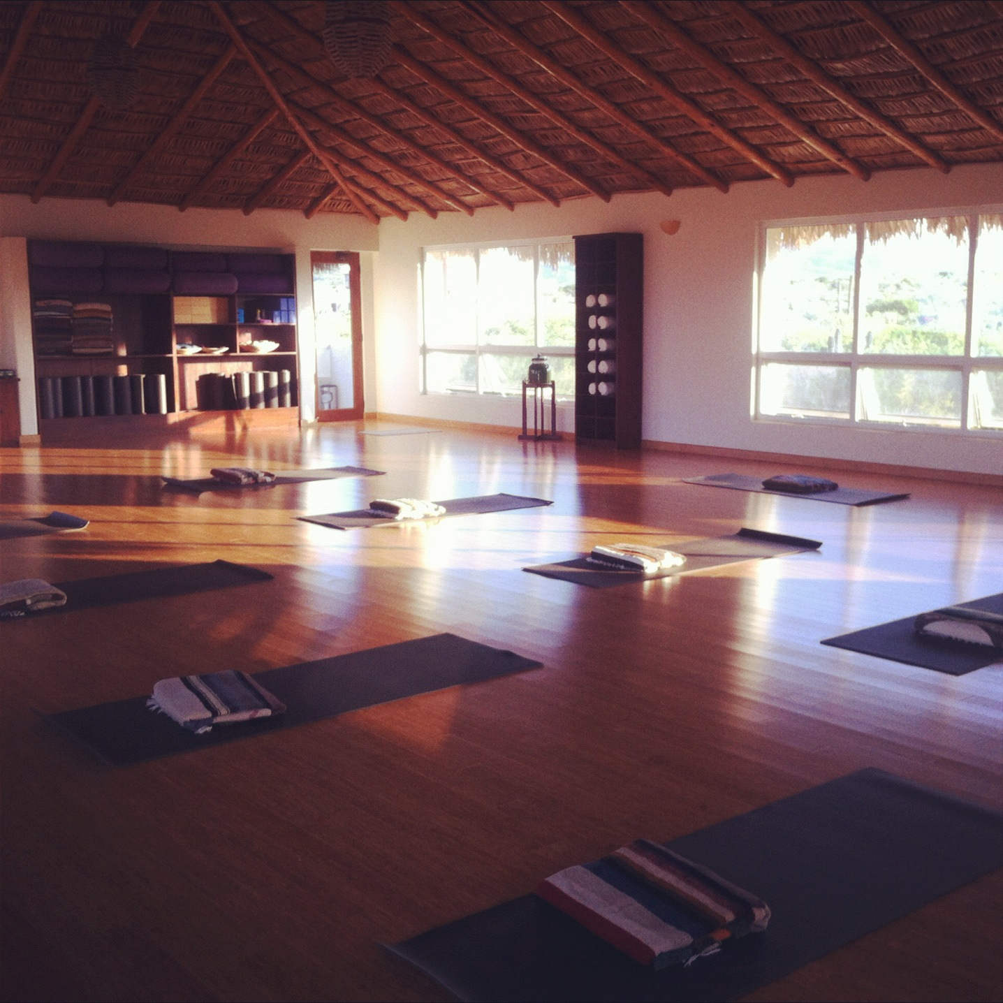 yoga feldenkrais classes
