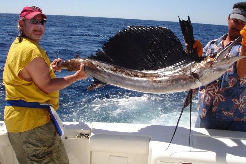 JimSailfish.jpg