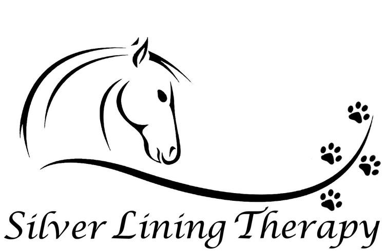 http://www.silverliningtherapytx.com/