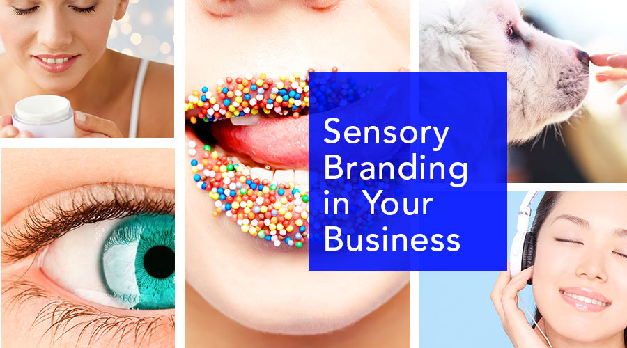 Sensory-Branding-graphic-design-san-diego-california-1.jpg