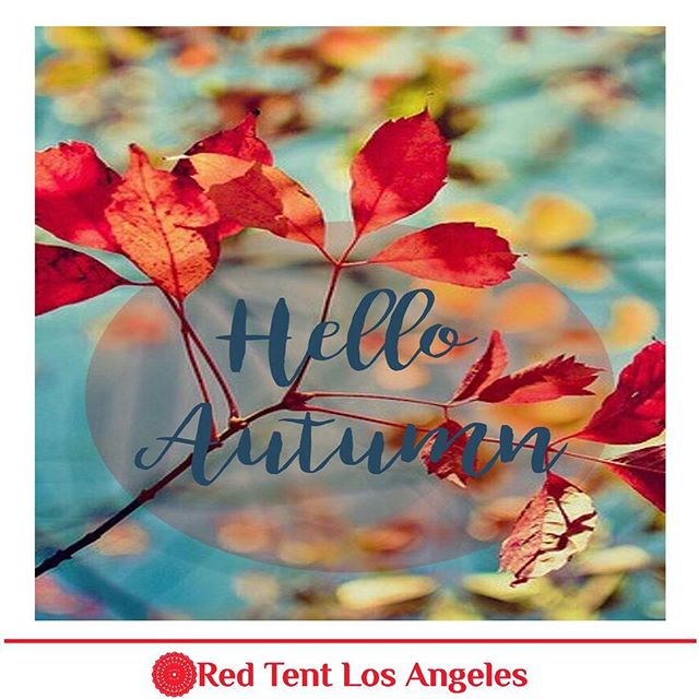 As the leaves flutter to the ground, we witness nature's cycle which also mirrors our lives. Autumn is the time for letting things go, especially things that have been a burden to us. Think of it as A natural cleansing of the soul.  Happy Fall! #autumn #redtentlosangeles #redtentevent #redtentliving #redtentwomen #sisterhood #feminiepower #feminiedevine #followme #follow #thankyou #grateful #love #appreciation #mondaymotivation #wombwisdom #mondaythoughts #gretahasselgracelmft @gretahasselgrace.lmft
