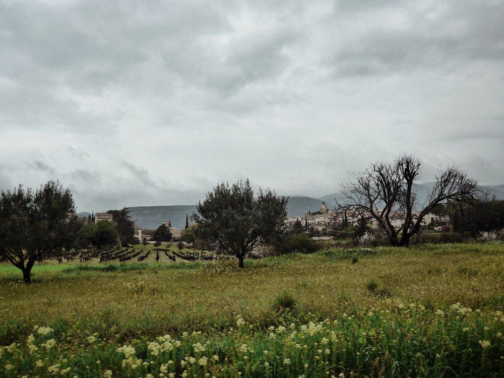 Provence_2.jpg