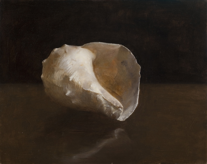 'Fossil Shell Lit From Right' By Helen Oh