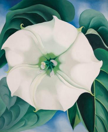 Jimson Weed/White Flower No. 1, 1932 - Georgia O'Keeffe