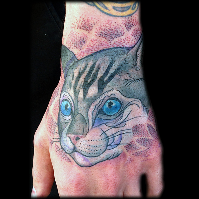 16-kitty_cat_meow.jpg
