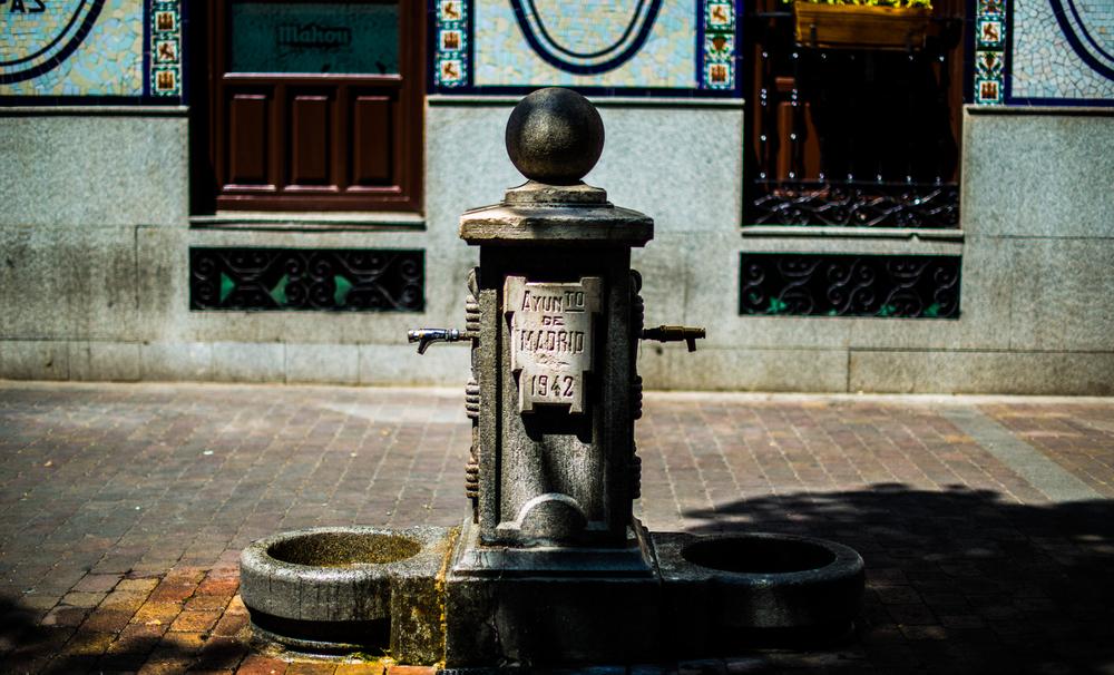 watering hole.jpg