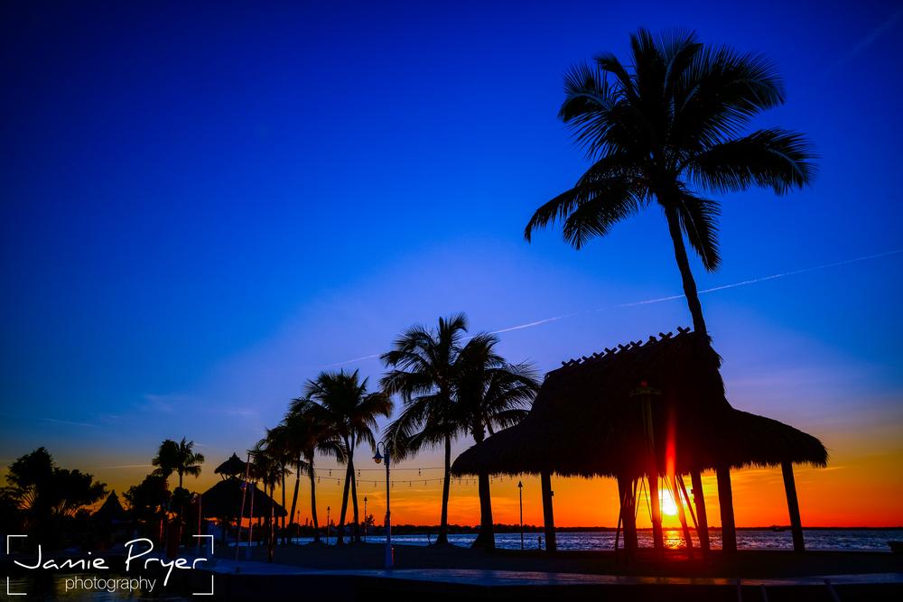Last Rays in Florida.jpg