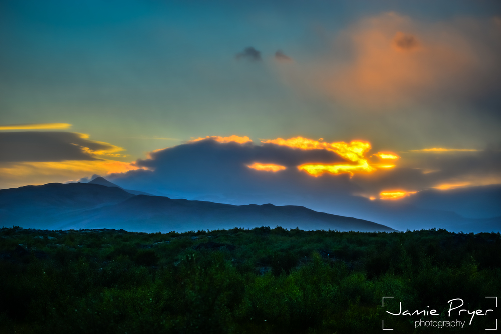 Morning Sun-2.jpg
