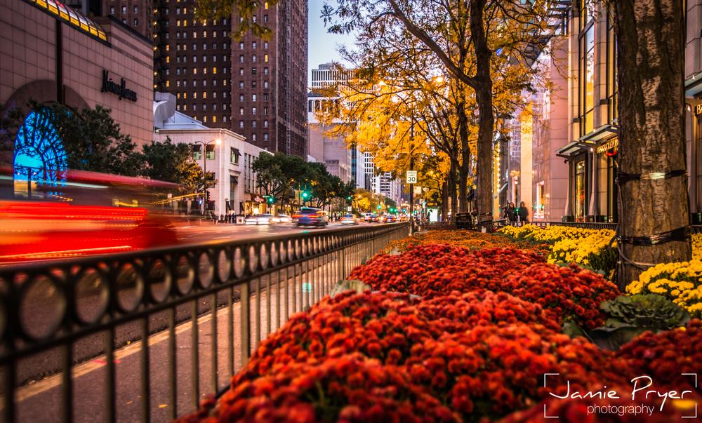Chicago Evenings-2.jpg